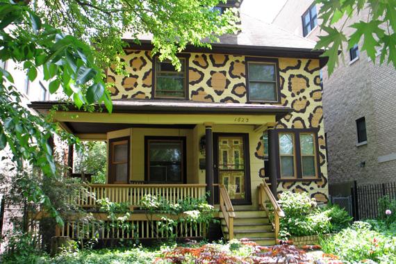 Urban Jungle house